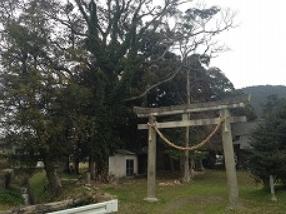 串間市 北神社2.PNG