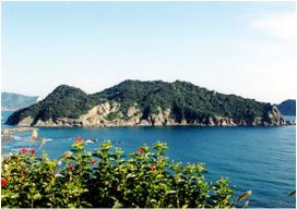 串間市 幸島サル1.PNG