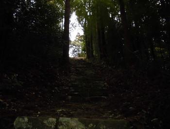 北川町 長井神社 階段参道2.JPG