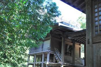 宮崎市13 江田神社 ご本殿3.jpg