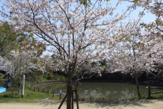 宮崎市 天神山公園.PNG