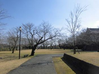 宮崎県 木城町 城山公園内風景2.JPG