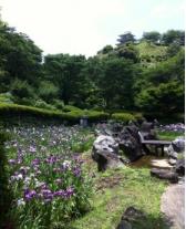 山之口 あじさい公園3.PNG