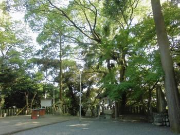 延岡市17 土々呂 霧島神社 境内風景2.jpg