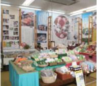 延岡市 のべおか観光物産ステーション2.PNG