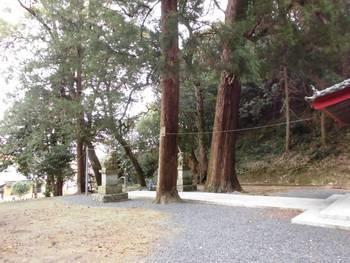 延岡市櫛津町11 櫛津神社 境内風景.jpg