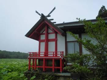 新富町11 水沼神社 ご本殿2.jpg