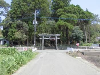 新富町2 新田神社 正面鳥居.jpg