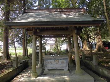 新富町4 新田神社 手水舎.jpg