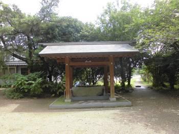 新富町5 水沼神社 手水舎.jpg
