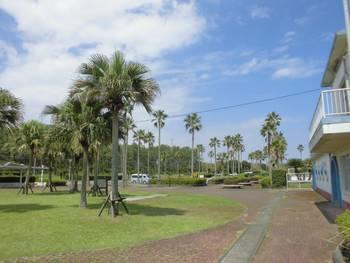 新富町 富田浜公園2.jpg