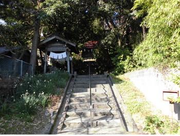 日南市 吾田神社 階段参道1.JPG