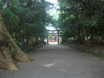 木城町2 比木神社 参道1.jpg