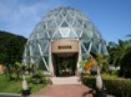 植物園1.PNG