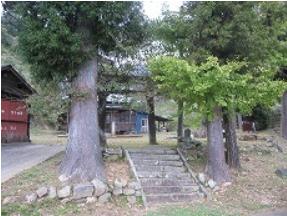 椎畑神社(しいはたじんじゃ)境内樹木.PNG