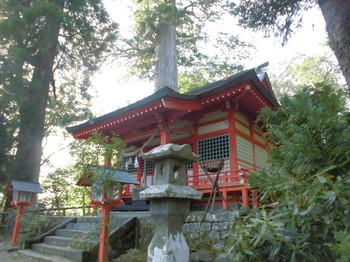 椎葉村 十根川神社 ご社殿とご神木.JPG