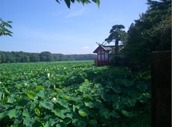 水沼神社本殿と湖水が池.JPG