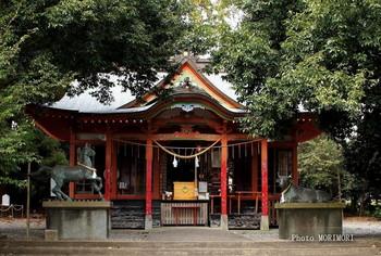 白髭神社.jpg
