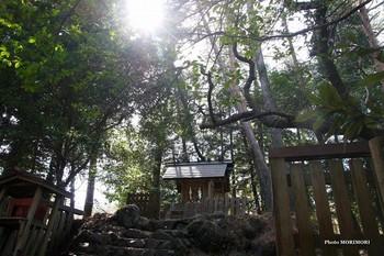 皇子原神社.jpg