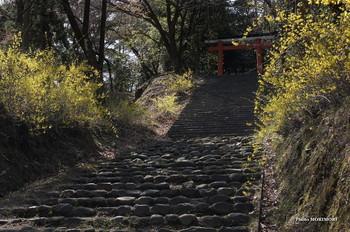 皇子原神社2.jpg