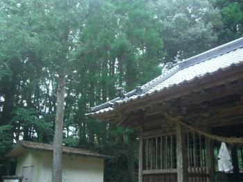 美郷町 神門神社 社殿瓦.JPG