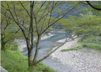 西米良村 川の景色 道の駅周辺.JPG