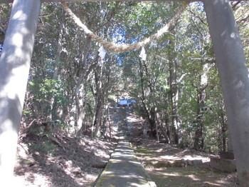 西米良村 村所八幡神社 参道階段中段付近.JPG