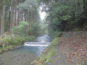 西都市1 芳野神社(よしのじんじゃ)脇の川.jpg
