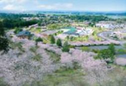 観音池公園.PNG