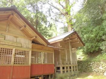 諸塚村8 諸塚神社 ご本殿3.jpg