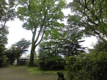 都城市 旭丘神社(ひのおじんじゃ)境内風景2.jpg