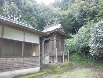 野尻町5 八尾やつのお神社 ご本殿.jpg