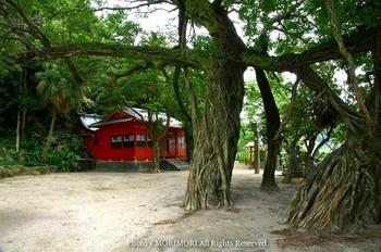 野島神社2.jpg