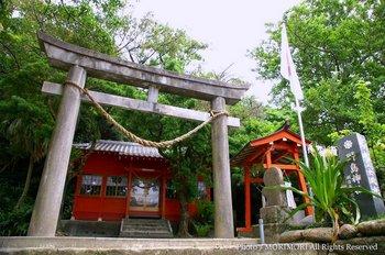 野島神社1.jpg