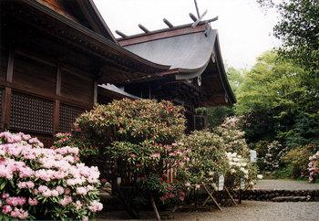 霧島岑神社.jpg