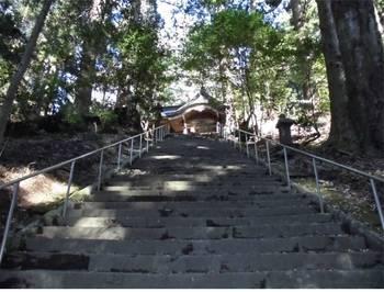 高千穂町8 槵觸神社 参道階段頂上付近.jpg