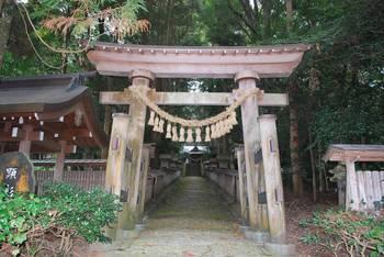 高千穂町2 落立神社(おちだちじんじゃ)参道鳥居.jpg