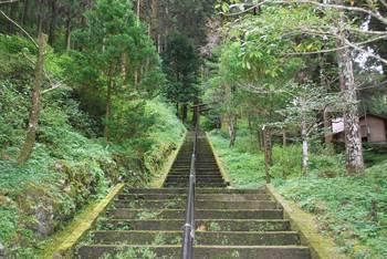 高千穂町3 秋元神社(あきもとじんじゃ)参道階段.jpg