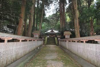 高千穂町5 落立神社(おちだちじんじゃ)参道.jpg