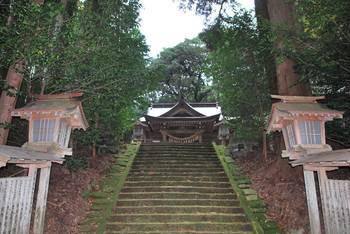 高千穂町6 落立神社(おちだちじんじゃ)参道階段.jpg