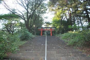高原町3 皇子原神社 階段鳥居.jpg