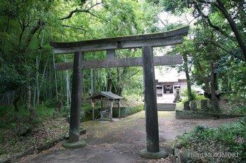 高屋神社.jpg
