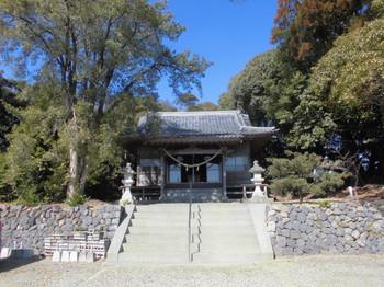 4新富町 八幡神社 正面ご社殿.JPG