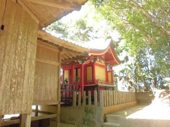 8新富町 八幡神社 ご本殿.JPG