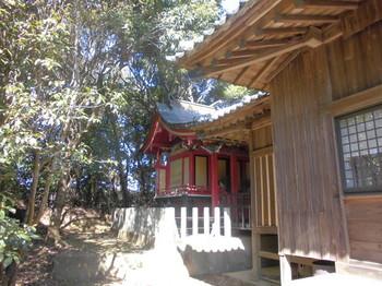 9新富町 八幡神社 ご本殿2.JPG